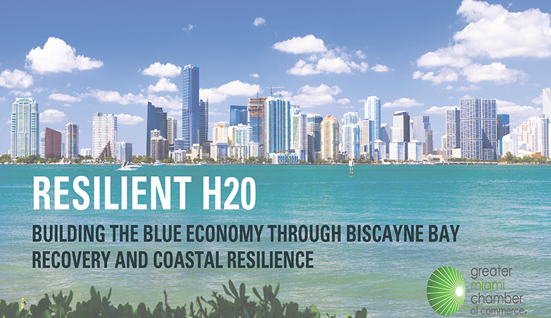 resilient h20