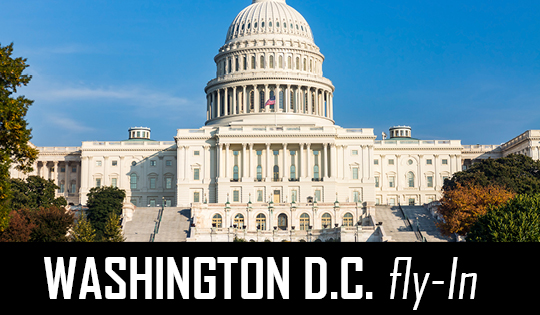 DC Fly in