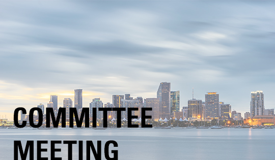Miami Chamber Committee Meeting